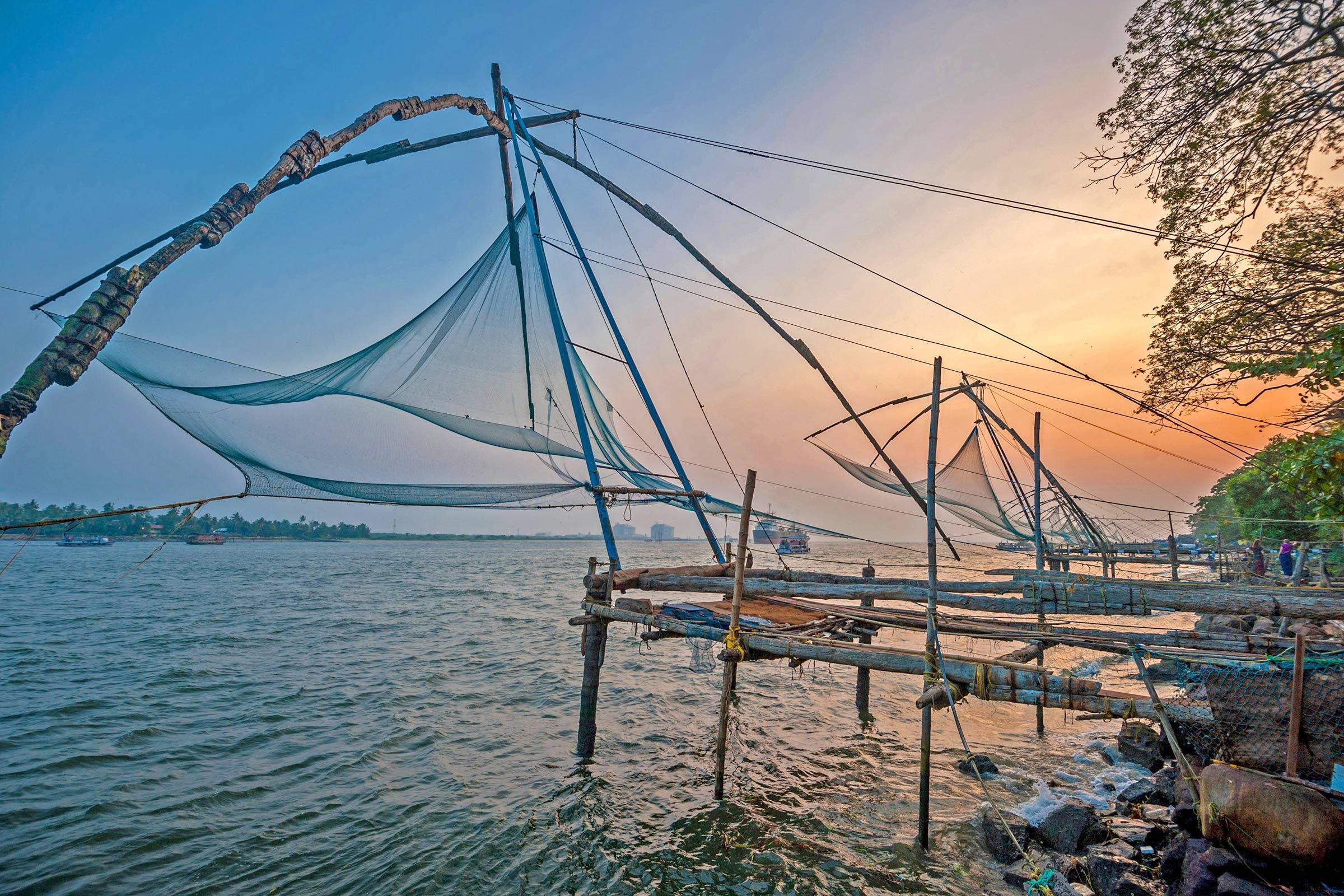 Kochi Fish Net
